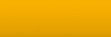 Honda Y31 Parakeet yellow